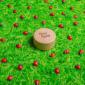 Bouteille-Sensorielle-Petit-Boum-Coccinelles pas cher